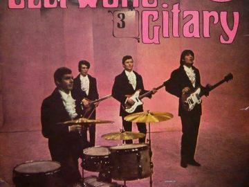 Dość spora płytoteka płyt winylowych Czerwonych Gitar